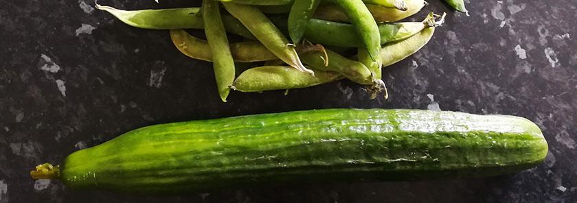Qu'est-ce qu'on mange en mai - Concombre farci à la crème de petits pois